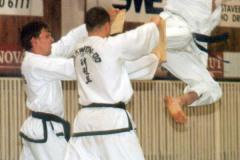 2001 - Slavnosti bojových umění