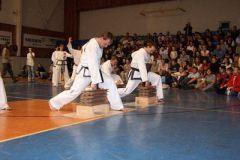 2006 - Slavnosti bojových umění
