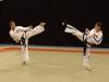 taekwondo01