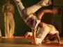 2009 - Slavnosti bojových umění