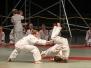 2013 - Slavnosti bojových umění
